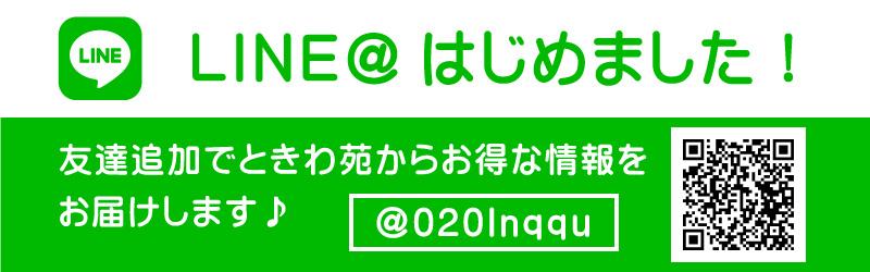LINE@始めました!友達追加でお得な情報をお届けします。
